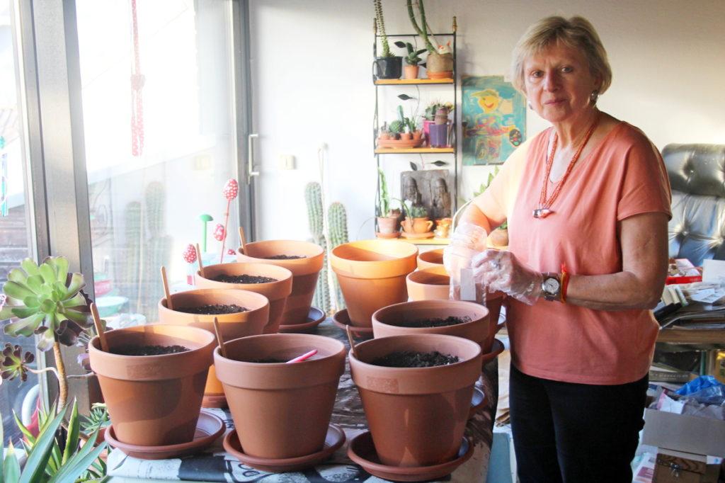 """Die """"SBi-Gärtnerin"""" Anne Hagel beim Einsetzen des Ginkgobaum-Samens. Zwischenzeitlich hat sie schon 10 Keimlinge entdeckt."""